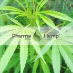 PharmaHemp はフルスペクトラムの CBD 製品を多数取り扱うメーカーです
