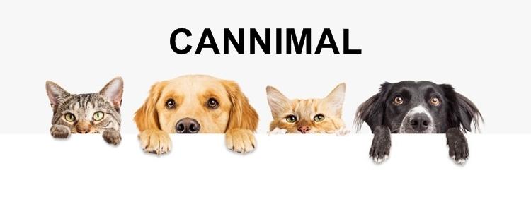 ペット用 CBD「CANNIMAL(カンニマル)」の製品ラインナップ