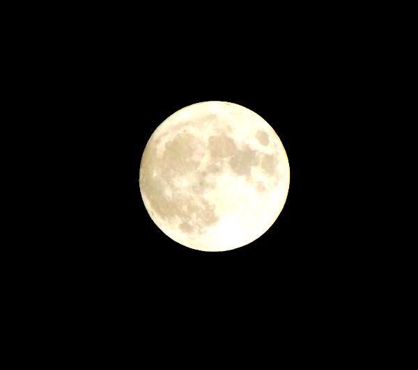 中秋の名月写真