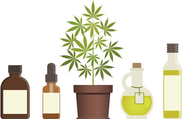 医療大麻の種類 イラスト