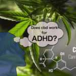 ADHDにCBDは効く?