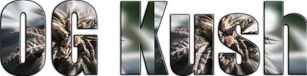 OGKUSHのロゴ
