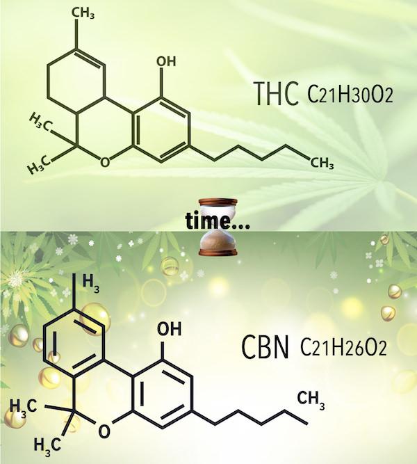 カンナビノイドの変遷